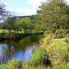 Riverbank by Ian Richardson