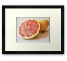 Grapefruit 1 Framed Print