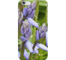 Why So Blue Belle? Bluebell iPhone Case/Skin