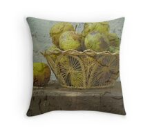 Still Life in Stucco Throw Pillow