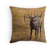 Challenged Throw Pillow