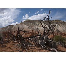 Kodachrome Basin, Utah Photographic Print