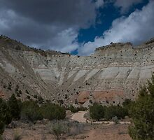 Kodachrome Basin, Utah by David Galson