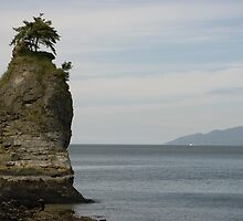 Sea Stack, Stanley Park, Vancouver, BC by David Galson