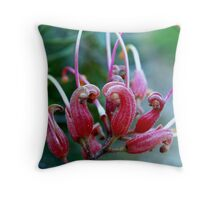 Grevillea friendship. Throw Pillow