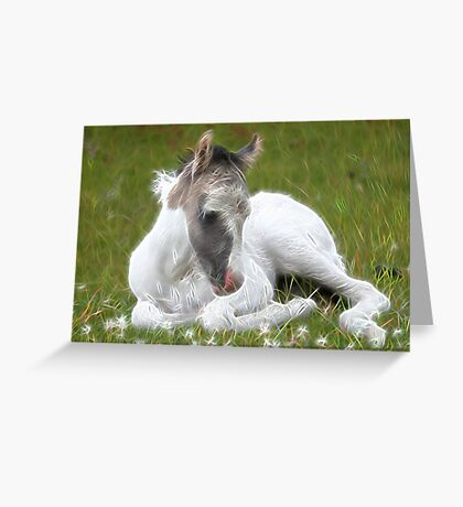 Many Small Childs Dream.  Greeting Card