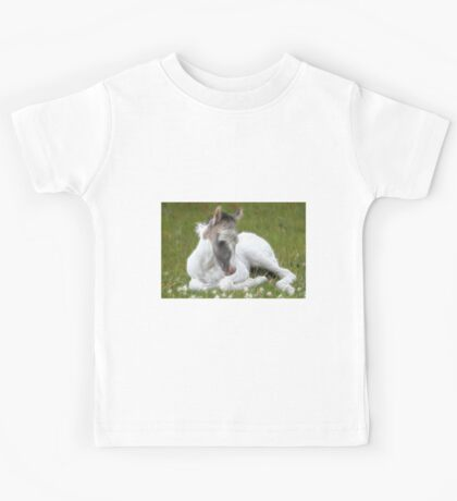 Many Small Childs Dream.  Kids Tee