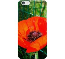 Giant Red Poppy iPhone Case/Skin