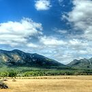 Sunburnt Country - The Grampians - The HDR Experience by Philip Johnson