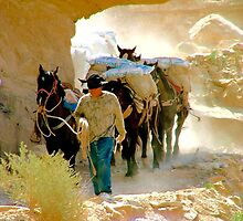 Dusty Trail In Havasu Canyon by Brent Sisson