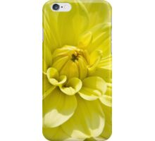 yellow flower close up iPhone Case/Skin