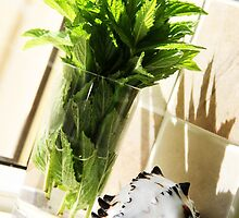 mint in a jar by caughtinmotion
