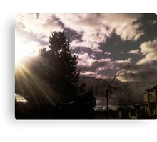 A Ray of Light Canvas Print