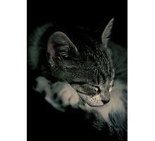 Luna Photographic Print