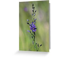 Wildflower Greeting Card
