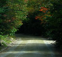 The roads are lovely, dark and deep ~ Robert Frost by Patty Gross
