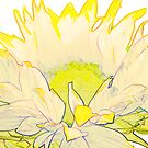 Sunflower by Sandra O'Connor