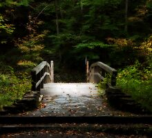 Early Autumn by Jeff Palm Photography