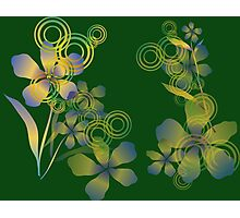 Abstract gradient flowers Photographic Print