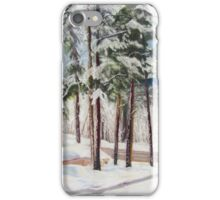 Winter Park at Daybreak iPhone Case/Skin