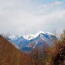 Landscape Near Zaga by jojobob
