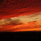 Sunset  Skyline by Darron Palmer