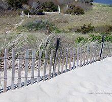 Beach Fence Watch Hill, RI   Napatree Point   2015 ~2 by Maureen Zaharie