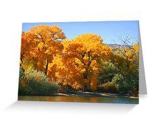 Beautiful fall colors Greeting Card