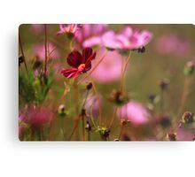Wildflower Metal Print