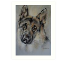 German shepard Art Print