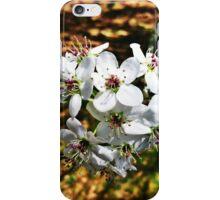 Flower Wonder iPhone Case/Skin