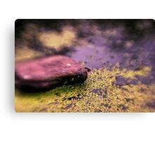 Upper Water Pond Canvas Print