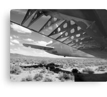 Flaps Down and Out Metal Print