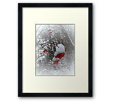 The snowflakes glisten on the tree..The sun no longer sets me free.. I feel there's no place freezing me..Let me feel the frost of dawn..Fill my dreams with flakes of snow..   Framed Print