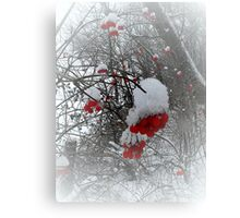 The snowflakes glisten on the tree..The sun no longer sets me free.. I feel there's no place freezing me..Let me feel the frost of dawn..Fill my dreams with flakes of snow..   Canvas Print