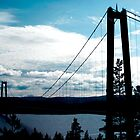 High Coast Bridge by fatdogcreatives