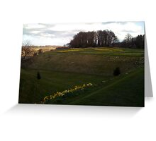 view from Alnwick castle in spring time...... Greeting Card