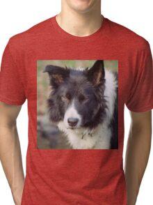 Indy Indomitable Tri-blend T-Shirt
