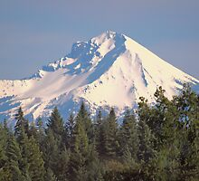 Oh Beautiful Mountain by Diane Schuster