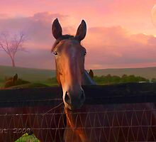Horse with Pastel Sky by Julie Everhart