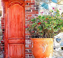 Red Door by patapping