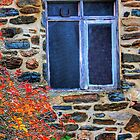 Blue Window by patapping