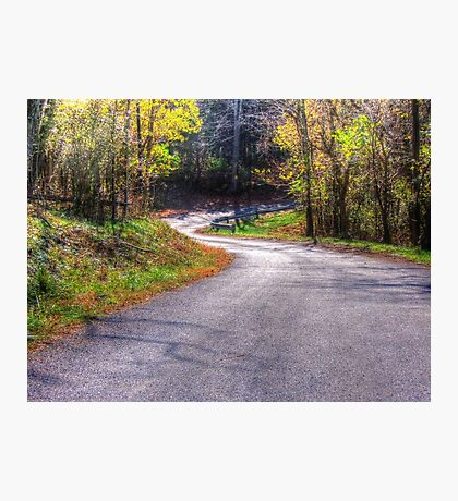 Curves In The Road  Photographic Print