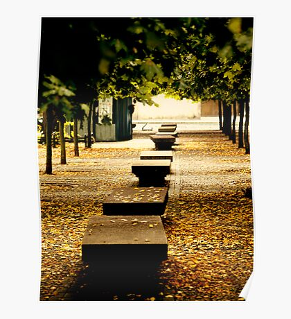 benches, leaves and trees Poster