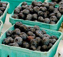 blueberry by Jennifer Muller
