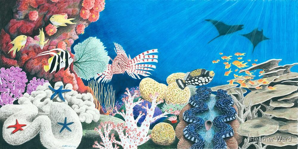 Underwater Rainbow - Coral Reef by Heather Ward