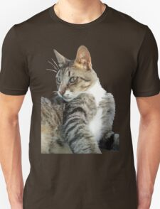 Tabby Cat Isolated Background Unisex T-Shirt