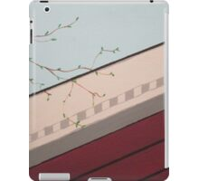 springtime in the valley iPad Case/Skin