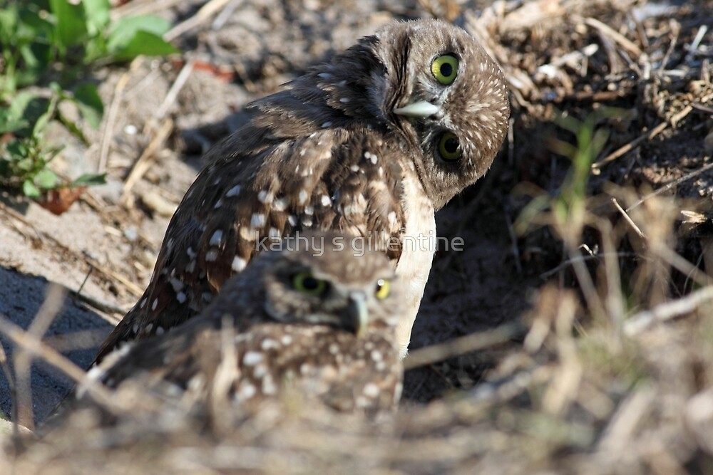 whatcha doin by kathy s gillentine