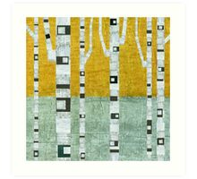 Early Winter Birches Art Print